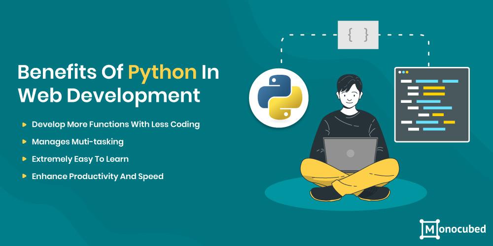 Benefits of Python in Web Development