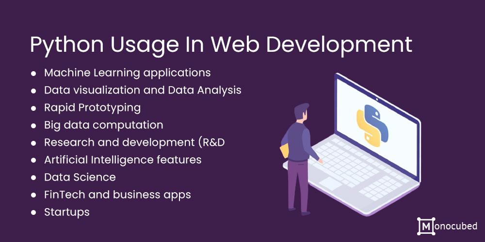 Python Usage In Web Development